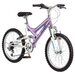 <strong>Pacific Cycle</strong> Girl's Chromium Mountain Bike