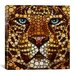 <strong>iCanvasArt</strong> 'Leopard' by Ben Heine Graphic Art on Canvas