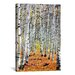 "<strong>Scenic ""Autumn in Aspen"" Photographic Print on Canvas</strong> by iCanvasArt"