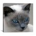 "<strong>iCanvasArt</strong> ""Blue Eyes"" Canvas Wall Art by J.D. McFarlan"