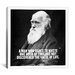iCanvasArt Charles Darwin Quote Canvas Wall Art