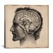 "<strong>iCanvasArt</strong> ""Head Anatomical Drawing"" Canvas Wall Art by Jean-Baptiste Marc Bourgery"