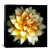 "<strong>iCanvasArt</strong> ""Dahlia"" Canvas Wall Art by Susan Barmon"