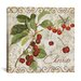 """<strong>""""Pastoral Fruits I"""" Canvas Wall Art  from Color Bakery</strong> by iCanvasArt"""