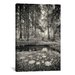 iCanvasArt 'Specular Echoes' by Geoffrey Ansel Agrons Photographic Print on Canvas