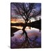 <strong>'Spreading Out' by Bob Larson Photographic Print on Canvas</strong> by iCanvasArt