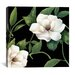 "<strong>iCanvasArt</strong> ""Sweet Magnolias I"" Canvas Wall Art from Color Bakery"