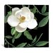 "<strong>iCanvasArt</strong> ""Sweet Magnolias II"" Canvas Wall Art from Color Bakery"