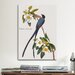 <strong>iCanvasArt</strong> 'Fork-tailed Flycatcher' by John James Audubon Painting Print on Canvas