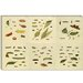 """Butterflies 9 Piece Plate Collection III"" Canvas Wall Art by Cramer and Stoll"