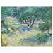 <strong>'Olive Orchard' by Vincent Van Gogh Painting Print on Canvas</strong> by Epic Art