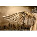 City of Angels Graphic Art on Canvas by Maxwell Dickson