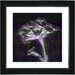 "<strong>Studio Works Modern</strong> ""Floral Montage"" by Zhee Singer Framed Giclee Print Fine Art in Purple"