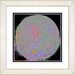 """Full Moon - Black"" by Zhee Singer Framed Fine Art Giclee Painting ... by Studio Works Modern"