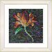 "<strong>Studio Works Modern</strong> ""Bliss Floral - Orange"" by Zhee Singer Framed Fine Art Giclee Print"