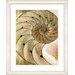 "Studio Works Modern ""Sea Cambrian - Sepia"" by Zhee Singer Framed Fine Art Giclee Print"