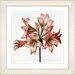 Studio Works Modern Vintage Botanical No. 33W by Zhee Singer Framed Giclee Print Fine Wall Art