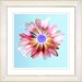 "<strong>""Sky Blue Snowflake Daisy"" by Zhee Singer Framed Graphic Art</strong> by Studio Works Modern"