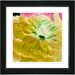 """Yellow Dahlia"" Framed Fine Art Giclee Print"