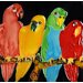 "<strong>En Vogue</strong> 8"" x 8"" Four Parrots Tile"