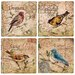 4 Piece Song Birds Travertine Ambiance Coaster Set