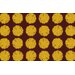 <strong>Fuzzy Dots Gold Rug</strong> by Thumbprintz
