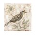 <strong>Bird On Branch with Butterfly by Cindy Lowry Wall Art in Beige</strong> by Blossom Bucket