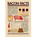 <strong>NMR Distribution</strong> Bacon Facts Tin Sign Graphic Art