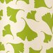 Green Ginko Leaf