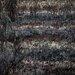 Savona Black/Gray Area Rug by Chandra Rugs