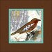 <strong>Obvious Place</strong> Lonely Bird Graphic Art on Canvas in Multi