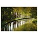 <strong>Graham and Brown Tree Walk Photographic Print on Canvas</strong> by Graham & Brown