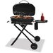 Tailgate LP Gas Barbecue Grill