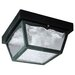 <strong>2 Light Exterior Hi-Impact Polypropylene Porch</strong> by Westinghouse Lighting