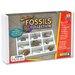 Educational Insights GeoSafari Fossils