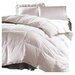 Sweet Jojo Designs Twin Down Alternative Comforter Duvet Cover Insert