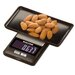 <strong>Salter Compact Electronic Scale</strong> by Taylor