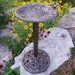 Hummingbird Bird Bath