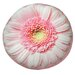 Round Daisy Dog Pillow
