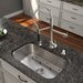 "Platinum 30"" x 18"" All in One Undermount Kitchen Sink with Faucet"