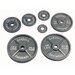 USA Sports by Troy Barbell 2.5 lbs Olympic Plate in Gray