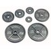 USA Sports by Troy Barbell 10 lbs Olympic Plate in Gray