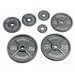 35 lbs Olympic Plate in Gray