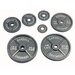 <strong>100 lbs Olympic Plate in Gray</strong> by USA Sports by Troy Barbell