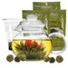 <strong>Tea Experience Gift Set</strong> by Primula
