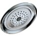 Delta Classic Rain Can Shower Head