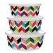 <strong>Ziggy 3-Piece Storage Container Set</strong> by French Bull