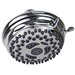 Waterpik 12-Setting Medallion Shower Head