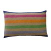 Jiti Rainbow Delight Pillow