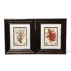 Propac Images Red Coral I / III 2 Piece Framed Graphic Art Set (Set of 2)